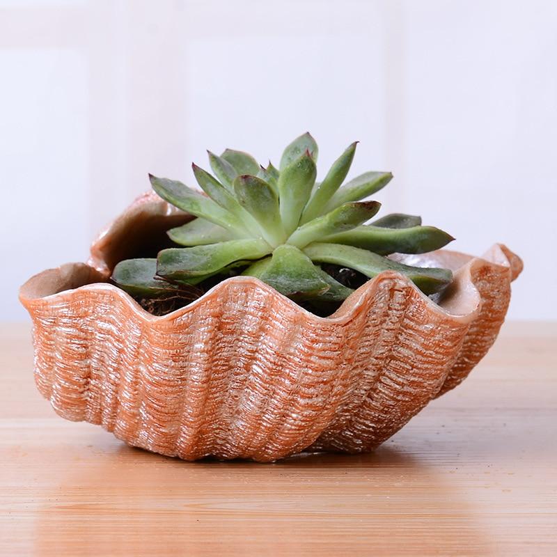 Macetas pequeñas para plantas suculentas bonitas, macetas para escritorio, y el jardín decoración del hogar, bandejas de brotes