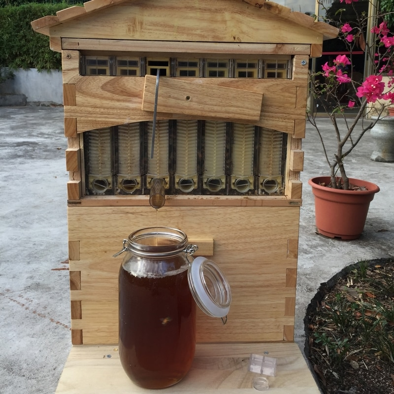 Holz Beehive Box Mit 7 Beehive Rahmen Bienenzucht Werkzeuge Honig Selbst Fließende Beehive Haus Bee Hive Liefert Imker Ausrüstung
