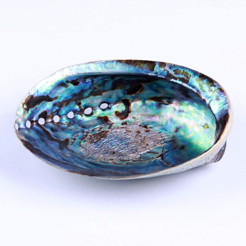 1 unidad de concha de abulón yaye para difuminar conchas marinas naturales, Kit de Inicio de limpieza y bendición para el hogar