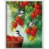 Volledige Borduurwerk, Dmc, Kruissteek, Fruit, Vogels, Plant, Home Decor, Diy, handwerken, Kits, Wit Canvas 40X50 Cm, Katoenen Draad, Sets