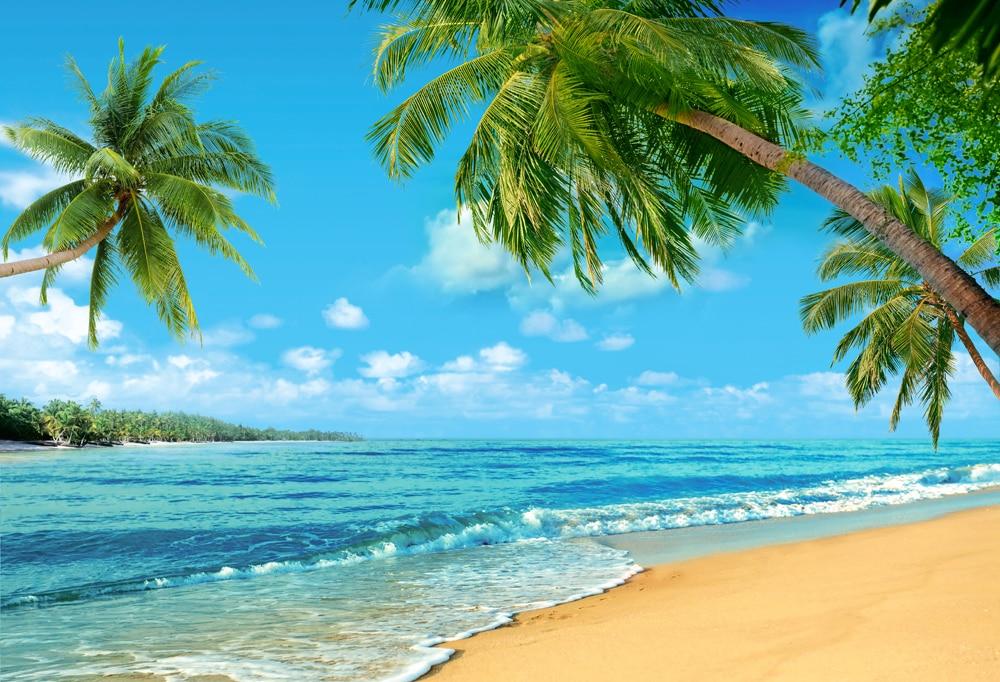 Fondo de fotografía de cielo azul, Fondo de fotografía de bebé, niños, Hawaii, playa, verano, Surf, fiesta, cabina de fotos XT-6610