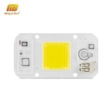 Dimmbare LED COB Lampe Chip 220 V 110 V 20 W 30 W 50 W Smart IC DIY Für LED flutlicht Scheinwerfer Keine Fahrer Hohe Qualität LED Perlen