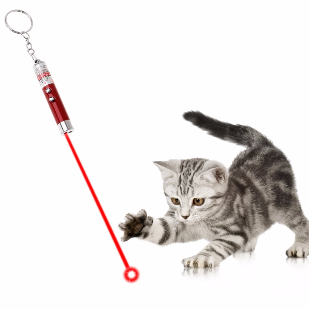 Cat Teaser Light Multi Functional Pet Toys LED Lamp Pen Pointer 2 in 1 Key Ring Dog Pets Products Keychain Portable Aluminum