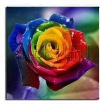 5D broderie diamant rond sept couleurs diy   Rose, broderie diamant, plein de peinture, point de croix, fleur carrée mosaïque diamant complet
