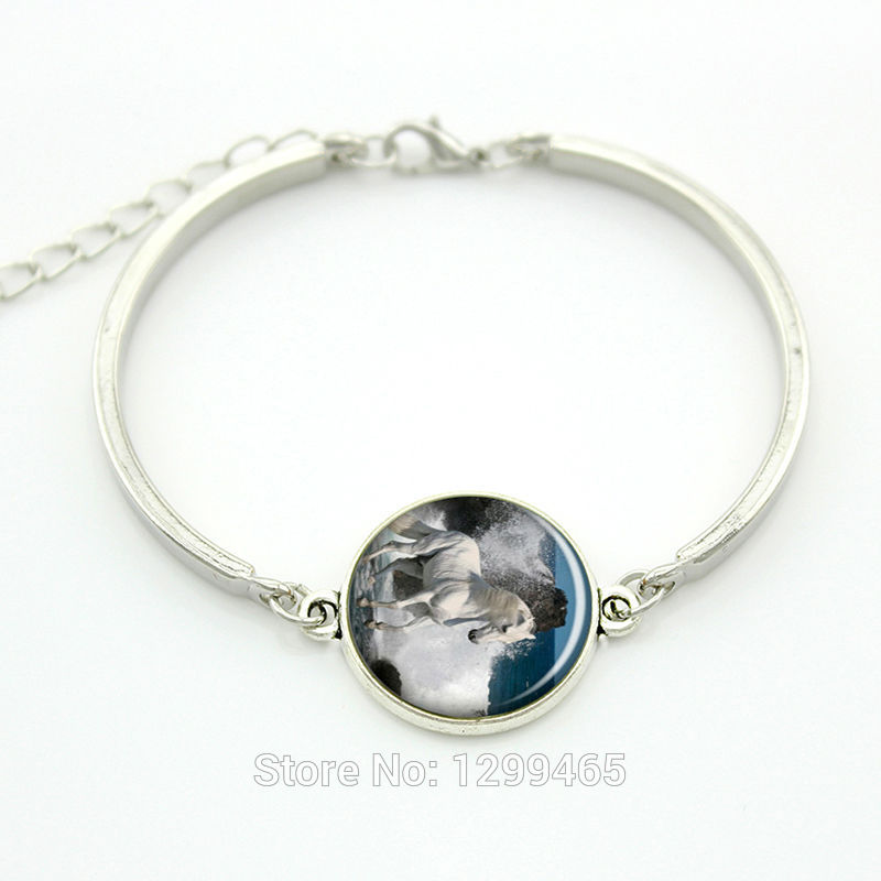 Horse bracelet Vintage White Horse animal charm jewelry Black Bird Raven Parrot Red Cardinal bracelets gifts for men women B147