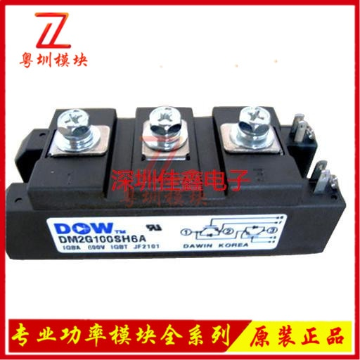 DM2G100SH6A  module Special supply Welcome to order !