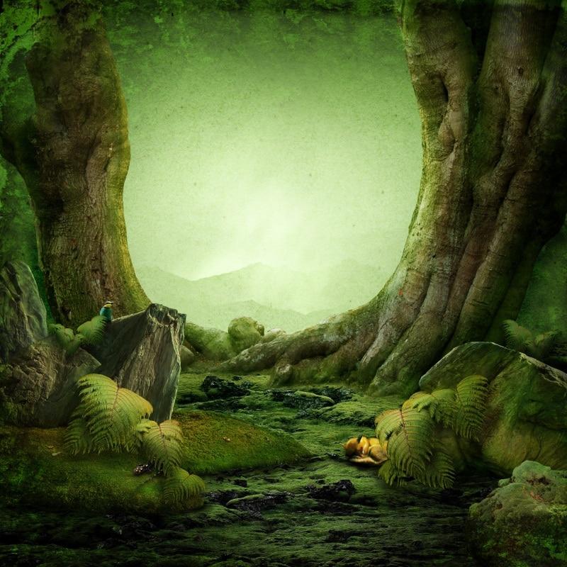 Laeacco Grün Hintergrund Märchen Alten Baum Moos Gras Geheimnis Weg Stein Kind Porträt Foto Hintergründe Photo Foto Studio