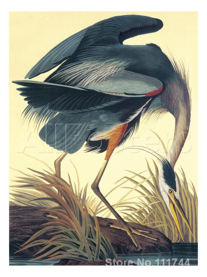 Aves modernas pinturas de arte Great Blue Heron John James Audubon pintados à Mão de Alta qualidade