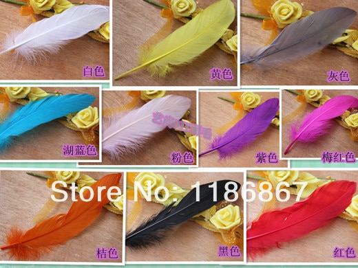 150 pçs/lote 15 de Penas de Ganso Pena DIY Tintos Single-20 cm/polegada #11 6-8 Cor mix Colours Ganso Coquilles Penas Trims P150
