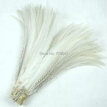 ¡50 unids/lote! 28-30 pulgadas 70-75cm plumas de cola de faisán de plata superlargas, colas de faisán de plata Natural, EMS envío gratuito