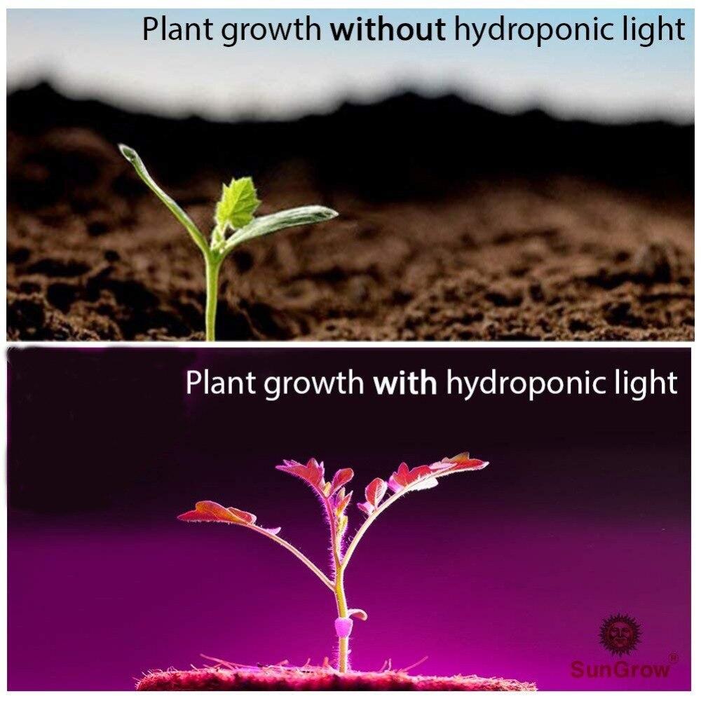 Led Grow Light 50W/100W/200W Full Spectrum Led Plant Light For Indoor Growing Indoor lighting enlarge