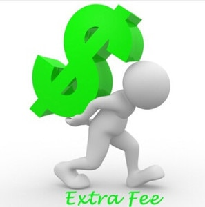 Additional Pay on Your Order: for Freight  / Your special requirement and other fee as our agreement