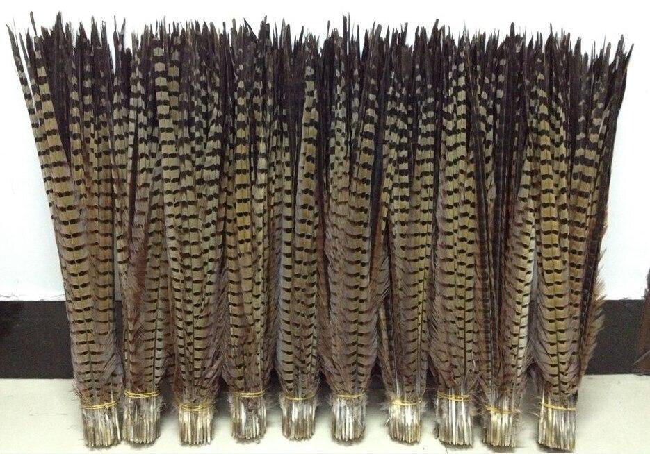 10 pçs natural ringneck faisão caudas pena 50-55cm longo pena de galinha para carnaval desempenho showgirl backpieces plumas