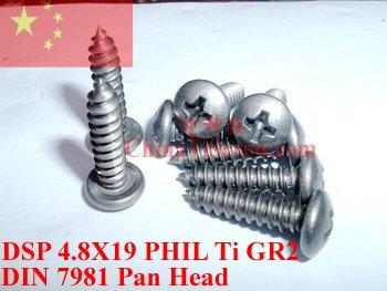 Parafusos de titânio 4.8X19 DIN 7981 Pan Cabeça Auto Tocando 50 pcs