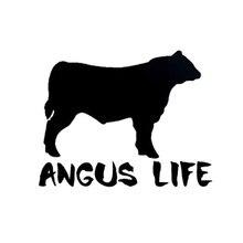 13cm * 10cm Angus vie vinyle drôle Animal vache fenêtre autocollant autocollant noir argent C5-0815