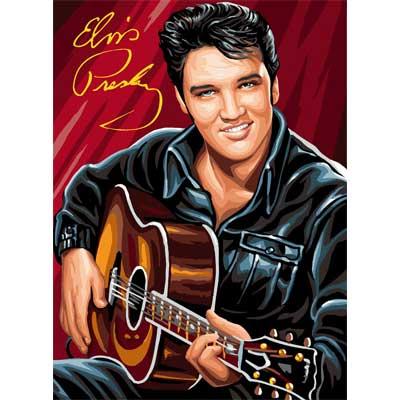 Cuadro Completo 5D DIY, pintura de diamante Elvis Presley, guitarra de diamante, bordado de punto de cruz, mosaico de costura, decoración del hogar JS2944