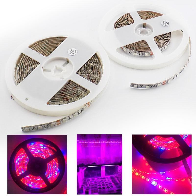 Tira de luces LED para cultivo de plantas, lámpara impermeable de 5M DC 12V 5050 para invernadero de interior con sistema de acuario hidropónico vegetal
