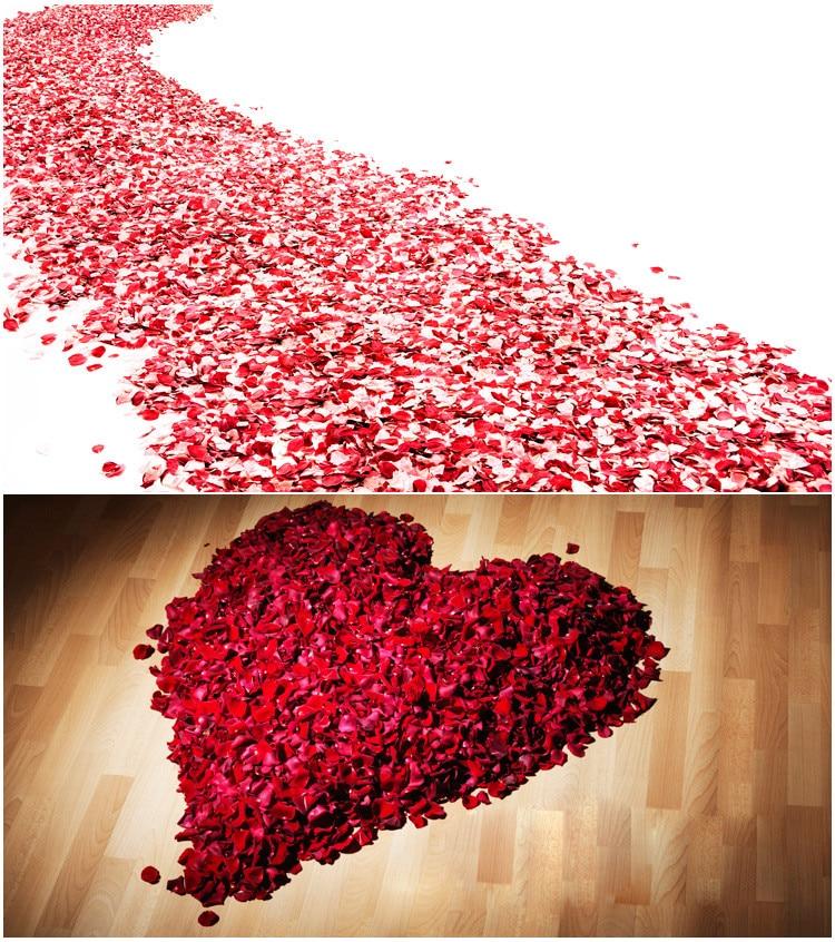 Accesorios de boda 2020, superventas 5000/paquete 5*5cm pétalos de rosa para decoración de boda, pétalos de rosa artificiales románticos