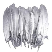 Plumes doie et de canard de faisan   Plumes doie, de canard, de canard, plumes dartisanat, de bijoux, vêtements de fabrication de plumes de dinde