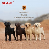 In Stock Collectible 1/6th Mr.z NO.25 Labrador Retriever Dog Model Toys 001/003/004 for 1/6 Action Figure Scene Accessory