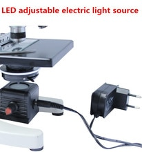 Biological Microscope LED Adjustable Electric Light Source Energy Saving Bottom Lamp Lighting 110V - 220V