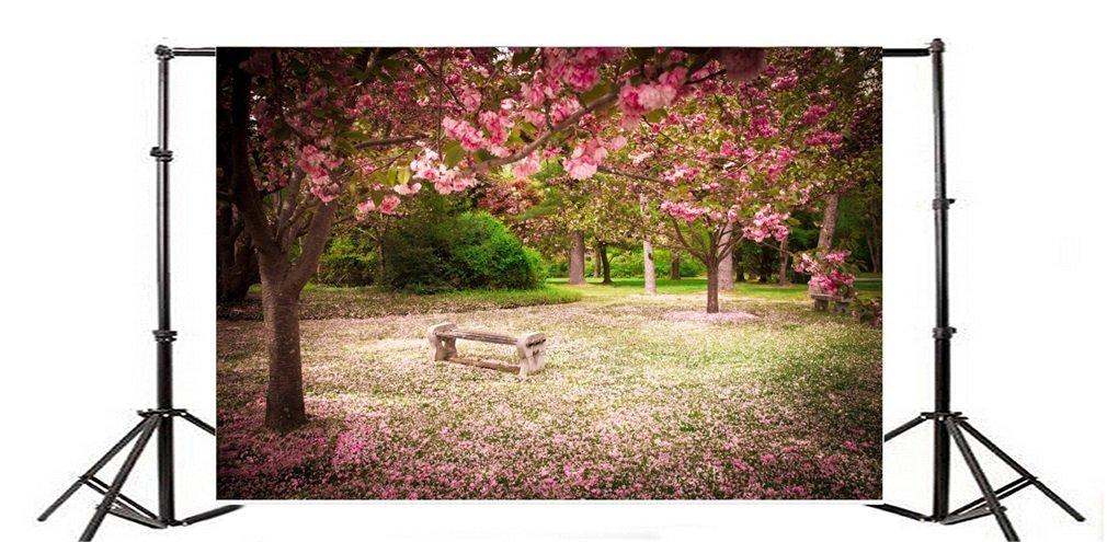 Fondo de fotografía flores de primavera Feliz Día de San Valentín flor de cerezo silla de madera árboles naturaleza chica