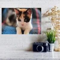 Mode personnalisee beau chat soie lumiere toile maison chambre impression murale decor chambre decoration bricolage cadeau livraison directe