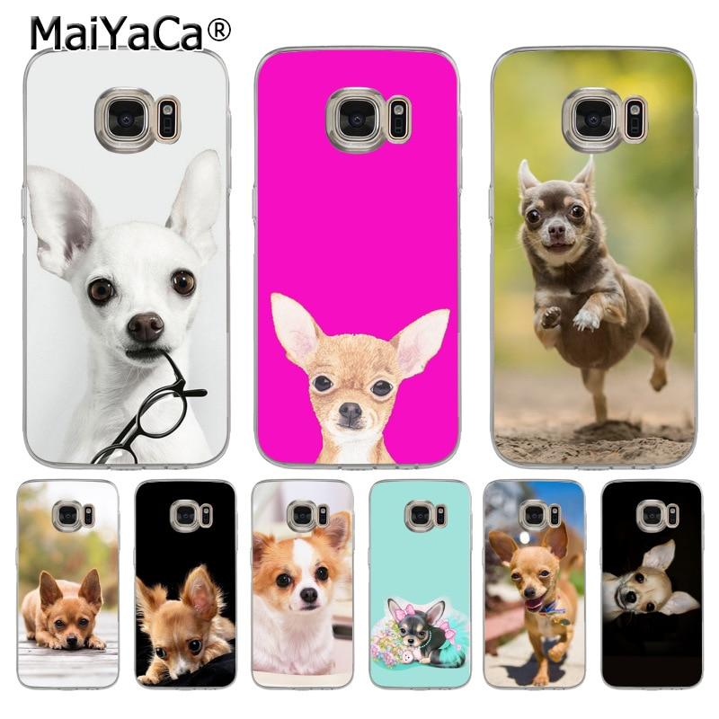 MaiYaCa Chihuahua dog transparent soft tpu phone case cover for samsung galaxy s8 s7 edge s6 edge plus s5 s9 case