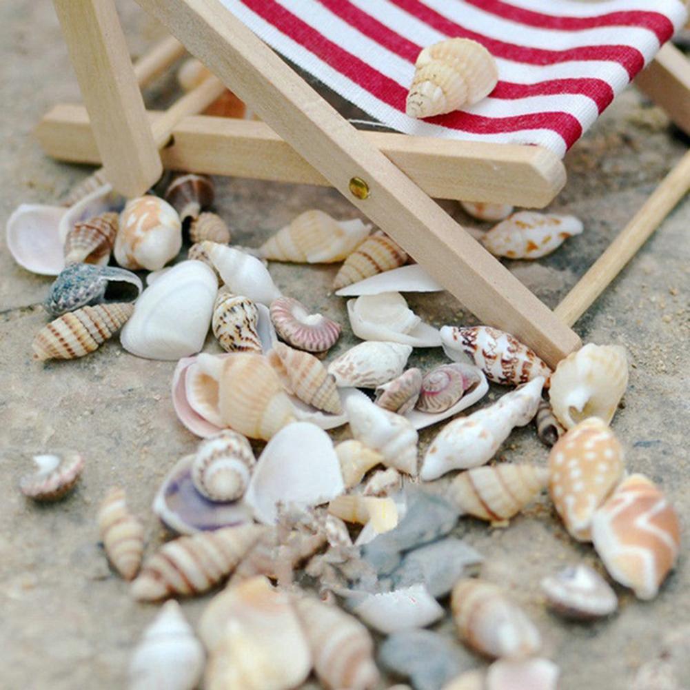 Ca. 40 Pcs Mini Miniatur Echt Sea Conch Shell Bonsai Lanscape Pflanzen DIY Decor Miniatur Garten Versorgung