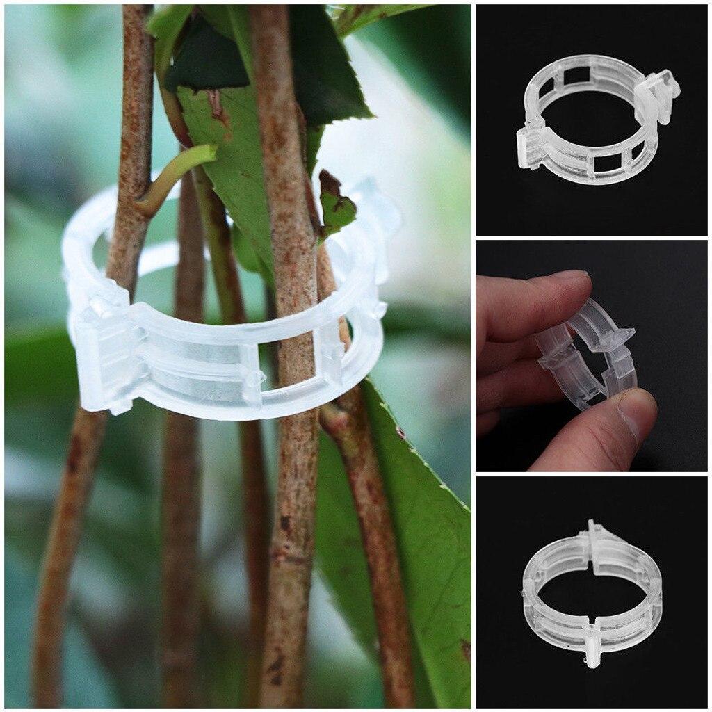 50 шт. прочные 30 мм пластиковые зажимы для поддержки растений типы подвесные лозы