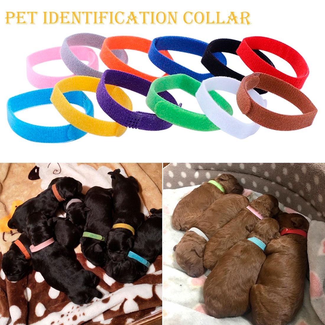 Ajustable de 12 colores de identificación ID collares bandas cachorro perro gato mascota gato de terciopelo práctica suministros para Mascotas y Cachorros