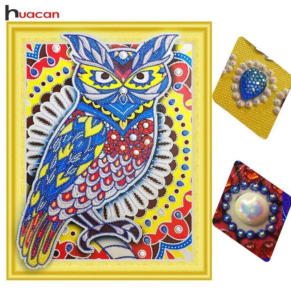 Huacan forma especial pintura de diamante Animal bordado de diamante de ave búho imagen de diamantes de imitación taladro redondo decoración del hogar 40x50cm