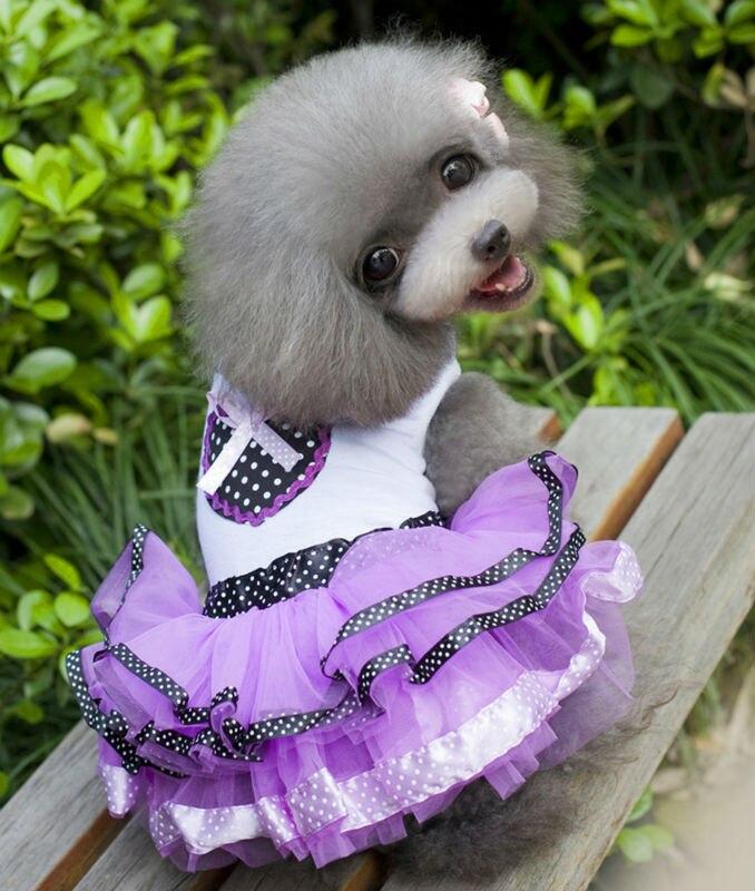 D33 encantadores vestidos de verano para mascotas ropa princesa púrpura faldas de tul para perros pequeños gatos disfraz vestido tutú para Chihuahua