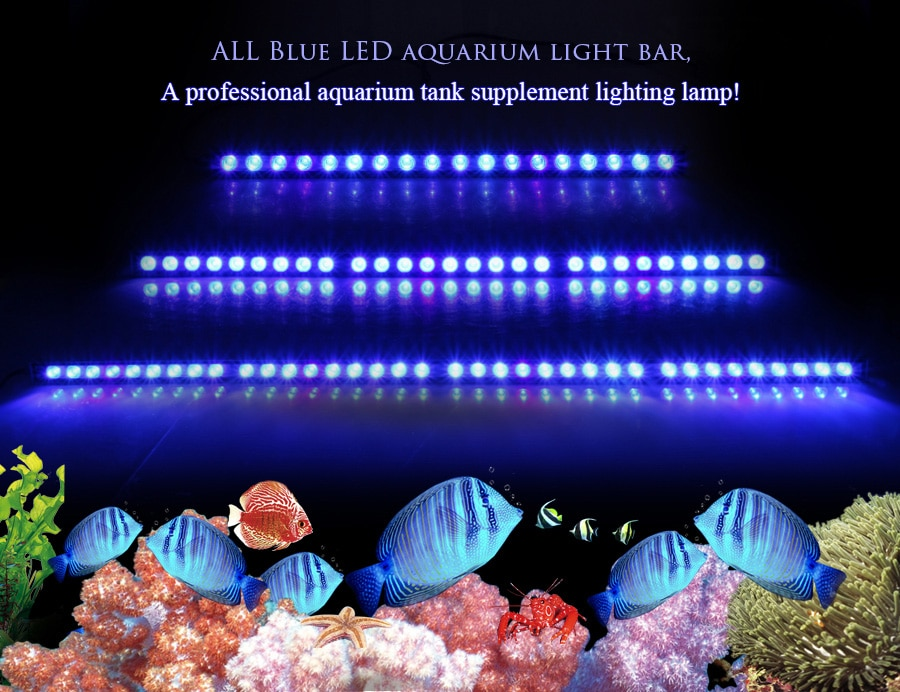 Populargrow 54W/81W/108W Led Aquarium bar Licht nur 470nm blau spektrum schöne ihre korallen riff aquarium lampe