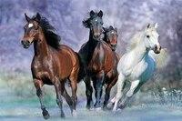 Affiche en toile de chevaux qui coulent  decoration de maison  classique  mode  personnalise  tissu dart mural imprime  U676766
