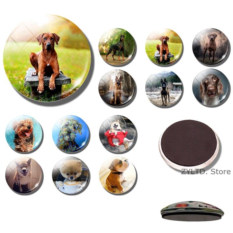 Магнит на холодильник для собак, 30 мм стеклянный кабошон, милые магнитные наклейки на холодильник с животными, доска объявлений, аксессуары для домашнего декора