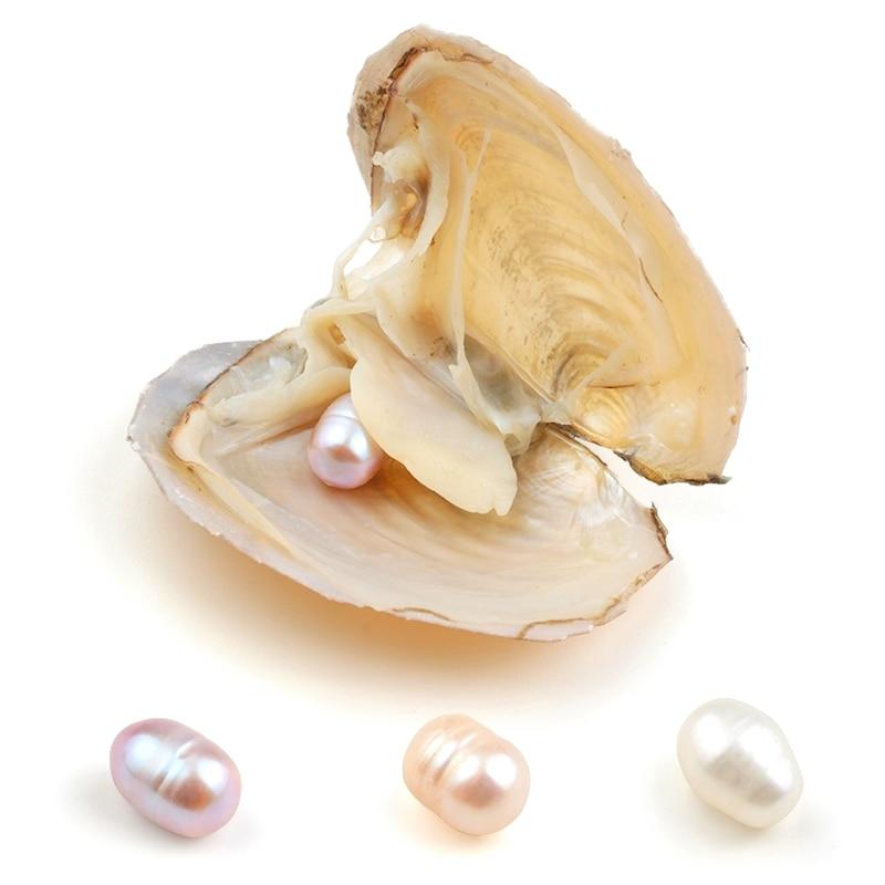 Perlas ovaladas Akoya de 8-9mm en ostra blanco rosado lavanda, 1 Uds., perlas de agua dulce para hacer joyas, regalo sorpresa