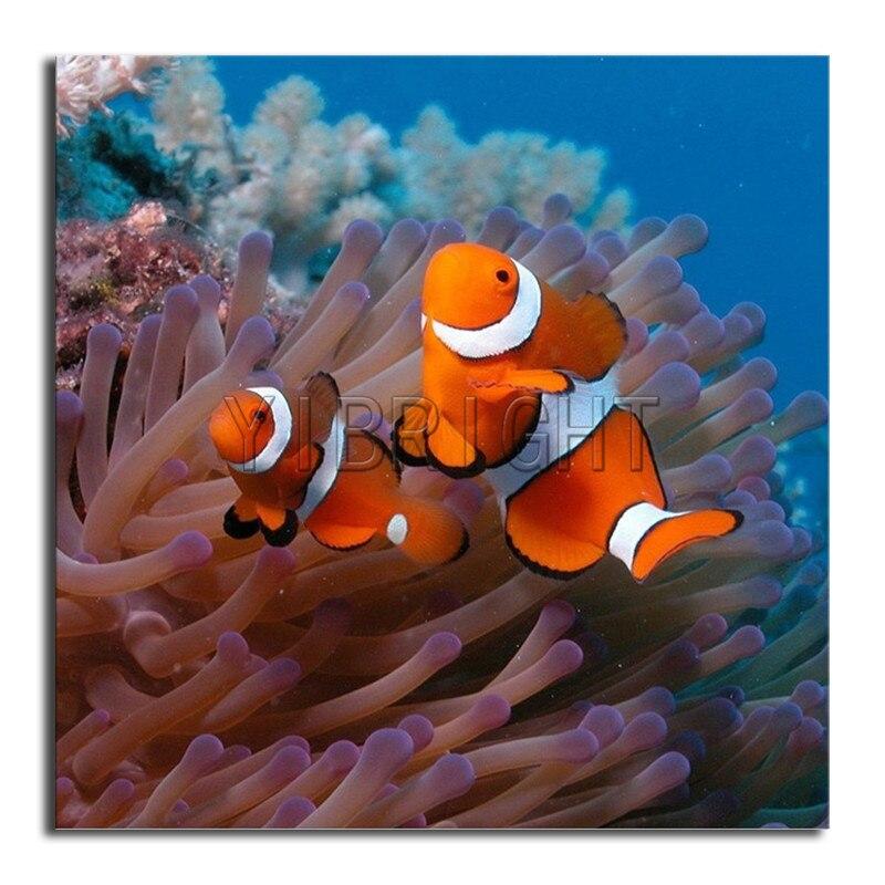5D DIY Алмазная Вышивка крестом оранжевая рыба полная квадратная Алмазная мозаика коралловые растения полная круглая алмазная живопись живо...