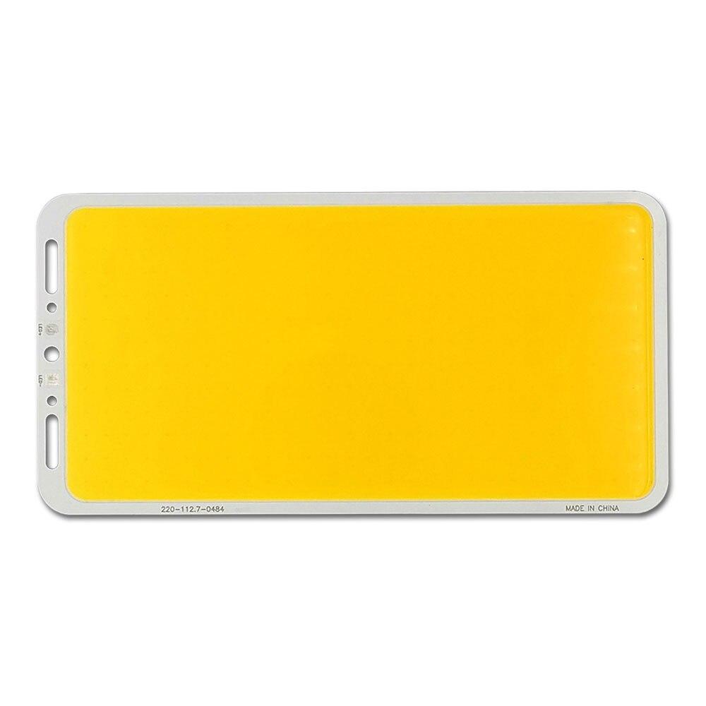 200W LED Panel Super Bright 24V 12V COB Light Board for Indoor Outdoor Lighting Blue Warm Cool White Color Waterproof LED Lamp