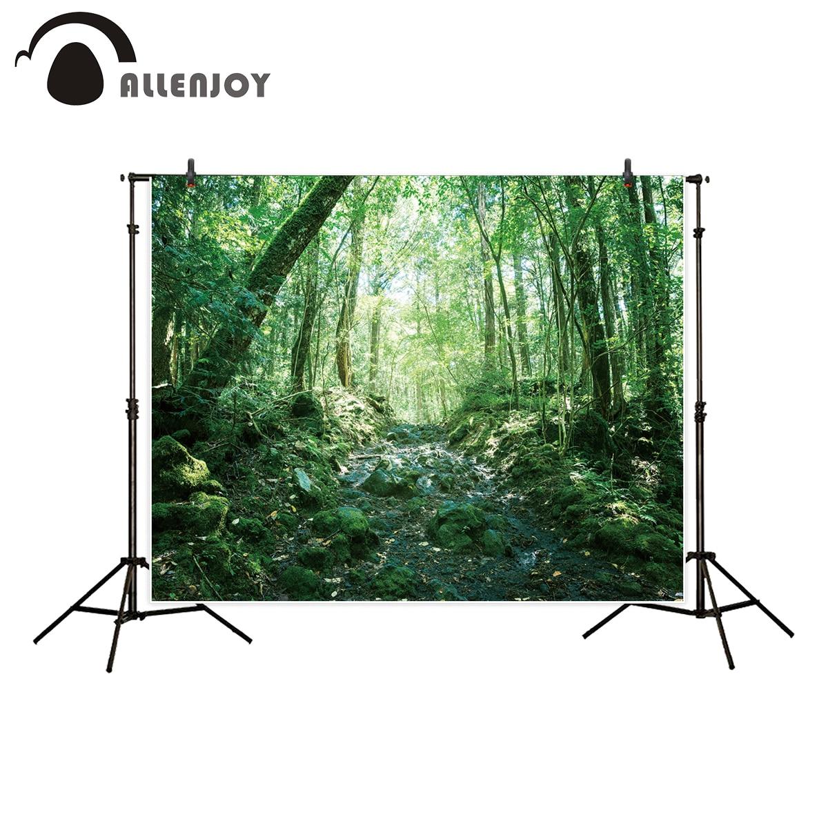 Allenjoy profissional fotografia fundo rochoso estrada floresta profunda verde primavera temporada pano de fundo photo studio photocall
