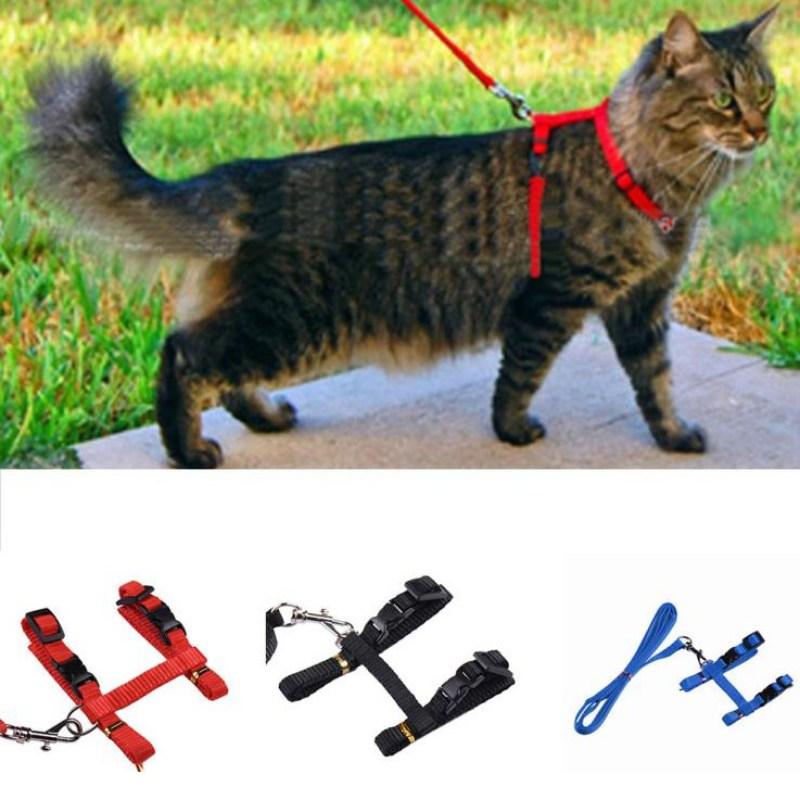 Katze Harness Und Leine Heißer Verkauf 3 Farben Nylon Produkte Für Tiere Adjustle Pet Traktion Harness Gürtel Katze Kätzchen Halter kragen