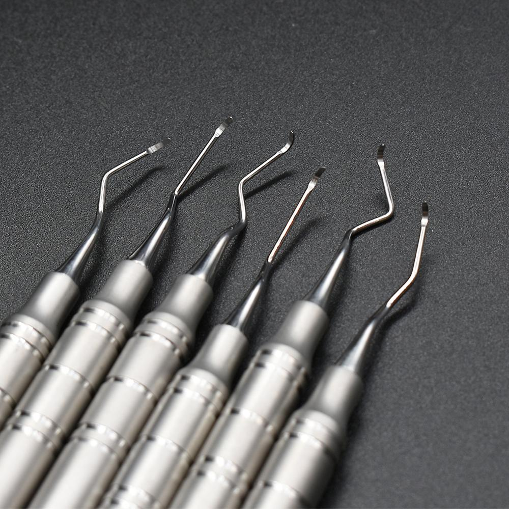 6 pcs Dental scaler scaling instrument Dental lab equipment dentistry with steel box
