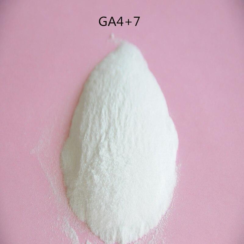 Gran calidad GA4 + 7, giberellin, GA4 + 7 giberellin A4 + 7 Auxin con alta calidad y bajo precio