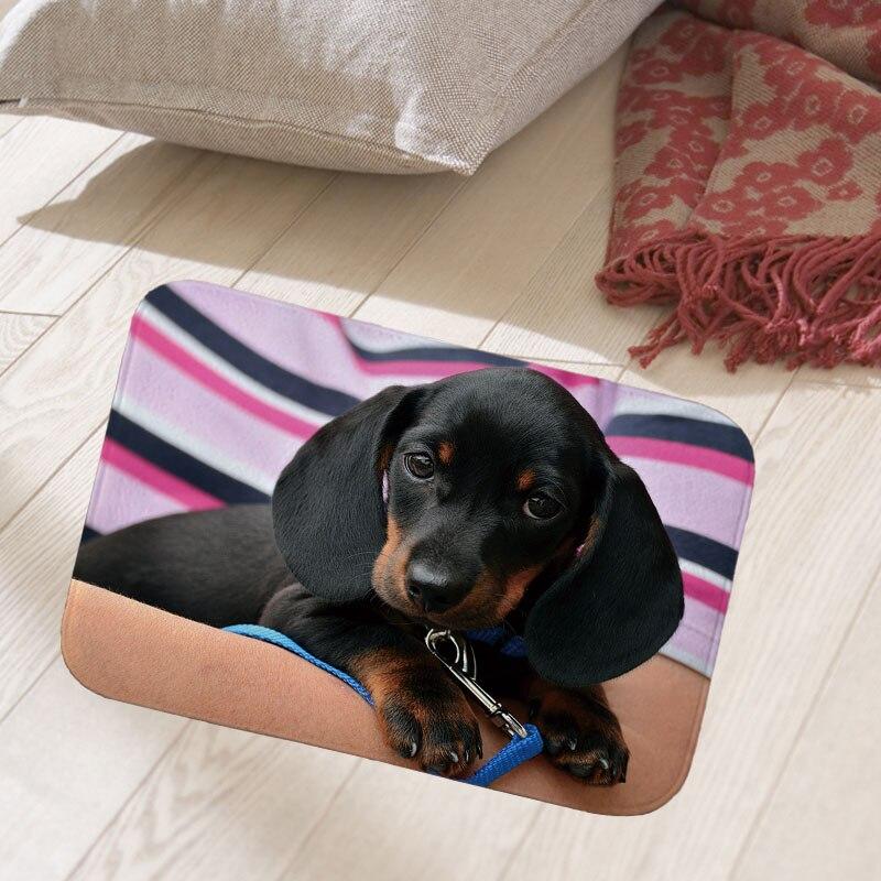 Alfombra de piso de 40x60 cm alfombra de puerta de entrada de gamuza alfombra de absorción de agua antideslizante bulldog foto impresa