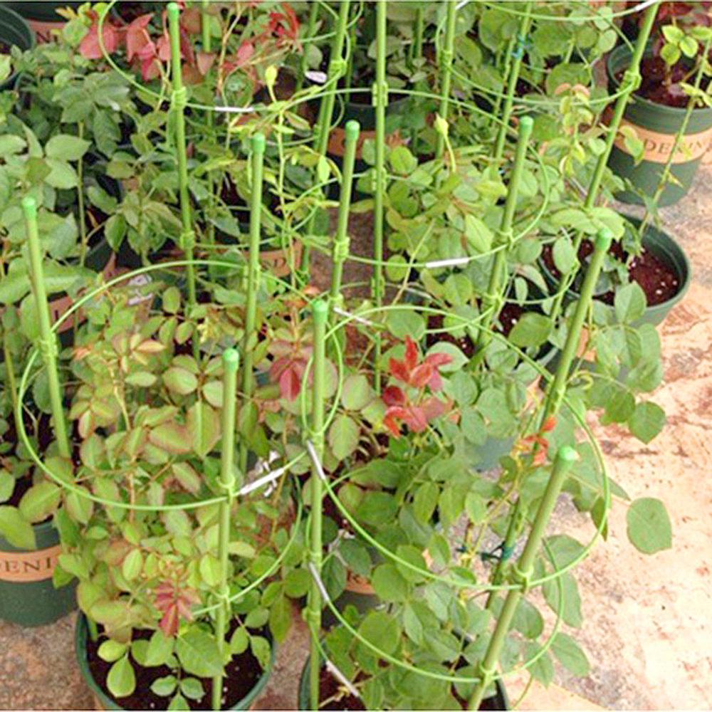 45cm / 60cm plezalna stojala za rastline v lončkih podporni okvir s - Vrtne potrebščine - Fotografija 6