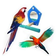 Blue Star Vogel Papagei Schaukel Sitzstangen Acryl Spiegel Stehenden Rack Bar Vogel Käfig Anhänger Decor Papagei Haustier Kauen Spielzeug Liefert