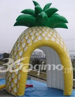 5x4m outdoor inflatable for advertising promotion