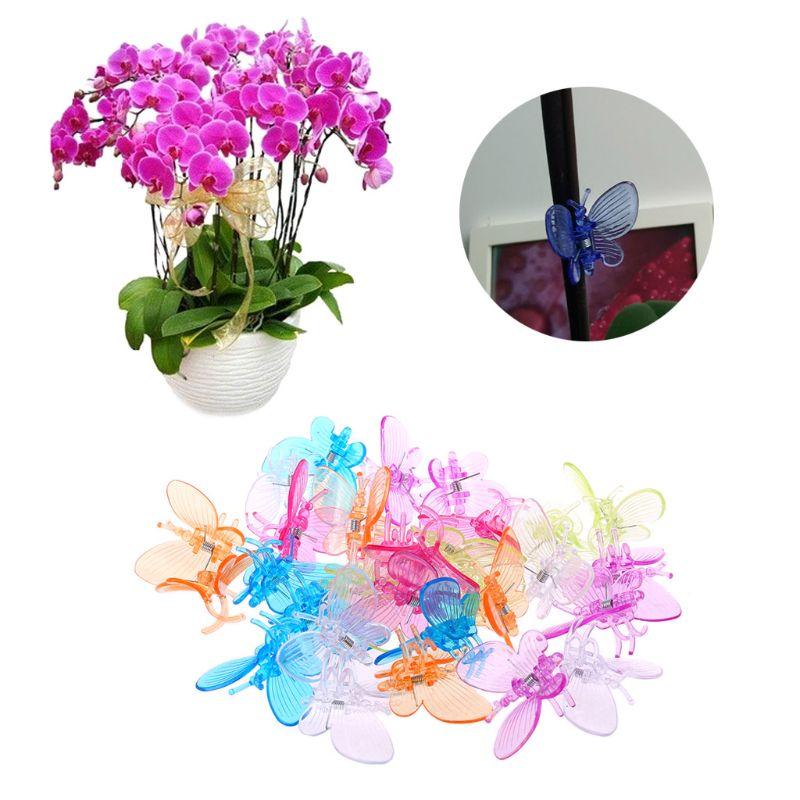 30 piezas mariposa orquídea Clips planta Clips jardín flor vid soporte Clips lindo