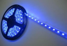 Wholesale 5M SMD 5050 Blue white Waterproof Strips Light white Strip light 300 LED free shipping