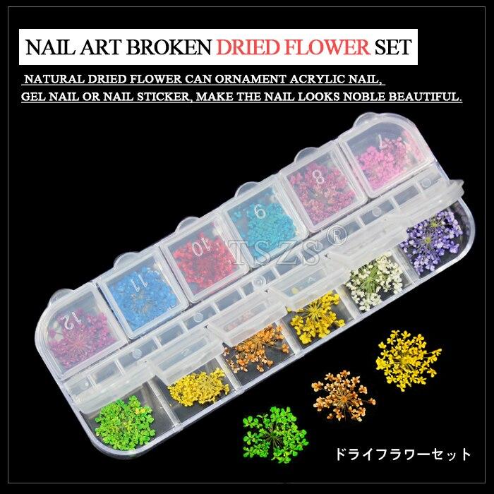 1 satz/los Reale Trockene Getrocknete Blume für 3D UV Gel Acryl Falsche Tipps Nail art Salon